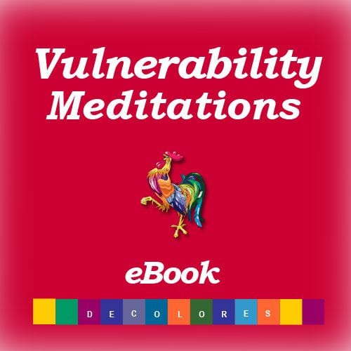 Vulnerability Meditations