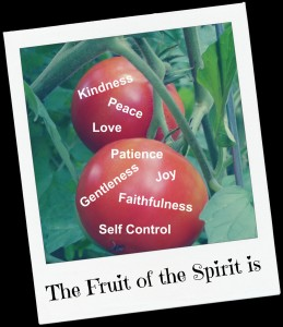 Tomatoe Fruit of the Spirit - Peace, Patience, Self Control, Gentleness, Faithfulness, Love, Joy