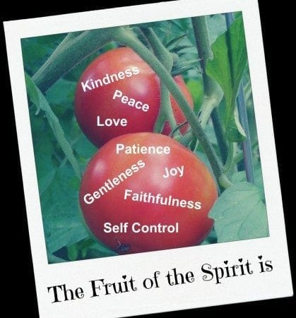Tomatoe Fruit of the Spirit
