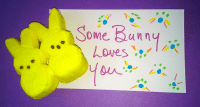 Some Bunny Loves You Palanca and Agape Idea